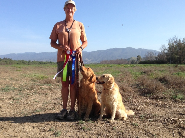 Willie second place (left) and Arson first place (rt)  at the IVRC  2014 single series with Danette.