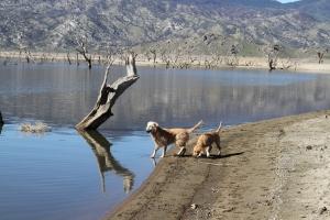Lyric and grandmother Annie at lake Isabella